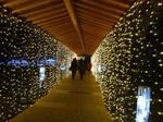 光の廊下.JPG